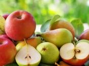 Osam namirnica koje trebate jesti češće tijekom jeseni i zime