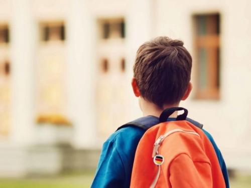 Zbog odlaska u inozemstvo 264 osnovaca lani ispisano iz škola HNŽ-a, ŽZH-a i HBŽ-a