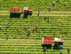 Iz Hercegovine u Podravku ide više od 2000 tona rajčice i paprike