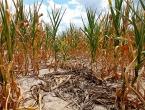 Stari klimatski zapisi bacaju potpuno drugu sliku na globalno zatopljenje