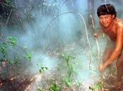 Brazilski predsjednik okrivio nevladine organizacije za požare u Amazoniji