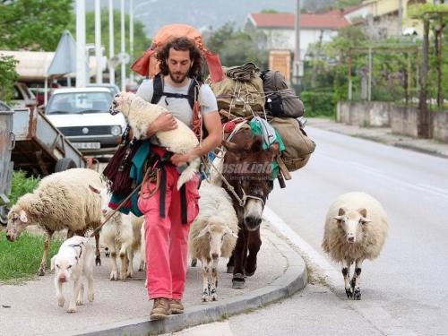 Iz Italije s ovcama i magarcem kroz Hercegovinu ide za Siriju