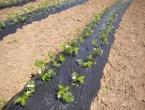 Eko plod Prozor: Poziv poljoprivrednicima