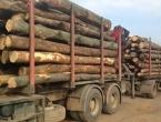 Proizvodnja šumskih sortimenata u BiH veća za 42,53 posto