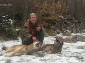 Dva hica - dva vuka: Spretni lovac Ivan odstrijelio dva kapitalca