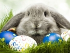 Kakve veze imaju zeko i jaja s Uskrsom?