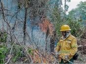 Brazil šalje vojsku radi zaštite Amazonije