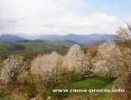 Proljeće - naš izbor fotografija