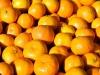 Čapljina| Uhvaćen pri ilegalnom prelasku granice u autu punom mandarina