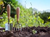 Više od 68 milijuna KM poticaja poljoprivredi i ruralnom razvoju FBiH