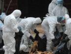 Zbog ptičje gripe zabranjen uvoz pilećeg mesa iz više hrvatskih županija