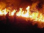 Brazilski susjedi pozivaju na pakt za zaštitu Amazonije