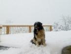 FOTO: Snijeg jutros zabijelio Ramu