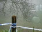 Topovska granata iz 1. svjetskog rata ubila čovjeka u Sloveniji
