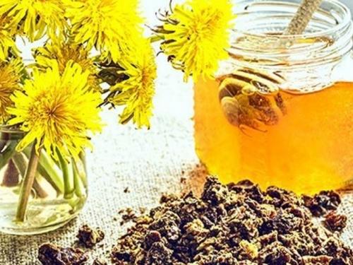 Pčelinji propolis: Jedan od najučinkovitijih antibiotika u prirodi