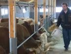 Više od milijun Europljana za prekid prijevoza živih životinja!