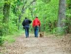 Deset dobrih razloga za šetnju
