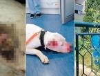 Policajac premlatio psa koji ga je ugrizao kad je ušao u dvorište, vlasnik ogorčen