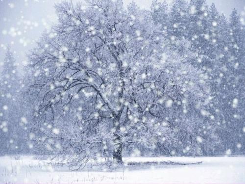 Stiže snijeg, evo kada će padati