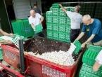U Njemačkoj i Nizozemskoj pronađeni insekticidi u jajima