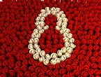 Žene, majke, dame, kraljice, sretan vam 8. ožujak (mart)!