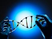 Znanstvenici objavili da razvijaju DNK računalo
