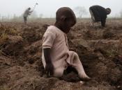 UN: Od 2000. prepolovljen broj smrti djece od uzroka koji se mogu spriječiti