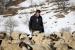 FOTO/VIDEO: Franjo odolijeva (ne)vremenu i svim životnim izazovima