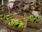 6 tona kokaina među bananama