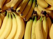 Vjerovali ili ne, BiH izvozi tropsko voće