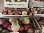 Obavijest o povlačenju jabuke Idared s tržišta BiH