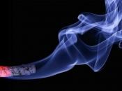 Znanstvenici su razvili duhan bez nikotina, sastojka koji je glavni uzročnik ovisnosti o cigaretama