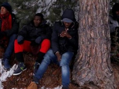 Livno: Pronađeni azilanti iz Libije, Tunisa i Alžira