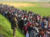 68% migranata nema nikakav dokument