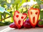 Jedemo li genetski modificiranu hranu?