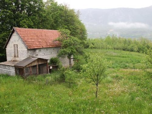OGLAS: Prodaje se kuća i 9 dunuma zemlje