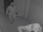 Ukraden novac iz centrale kladionice u Posušju, objavljene fotografije počinitelja