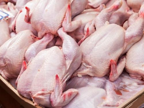 BiH će izvoziti piletinu u Europsku uniju
