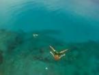 Ludi skok u more