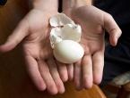 Tajna dugovječnosti leži u jajima!