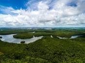 Poziv svijetu da se snažnije angažira na zaštiti Amazonije