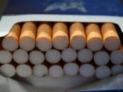 Zaboravite na šteku: U Hrvatsku možete unijeti samo dvije kutije cigareta
