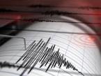 Najmanje 29 mrtvih u snažnom potresu na Haitiju