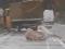 Kamen se odronio i pao na kamion, vozač ozlijeđen