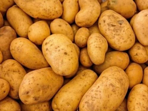 Propadaju milijuni tona krumpira zbog zatvorenih restorana