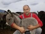 Sve je krenulo kao hobi s četiri konja, a danas Andrija na farmi ima 250 magaraca