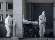 Virus: WHO priznao grešku, razina prijetnje je visoka