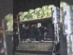 U kamionu natovarenom kupusom otkriveno 38 migranta