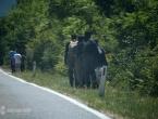 Migranti otvaraju novu rutu prema Neumu