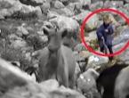 VIDEO: Mali pastir sa snimke se zove - Luka Modrić!